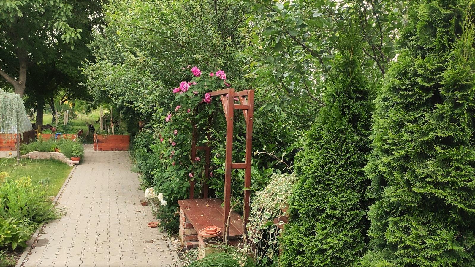 záhrada vidiecka, farebná rok 2021 - Obrázok č. 97