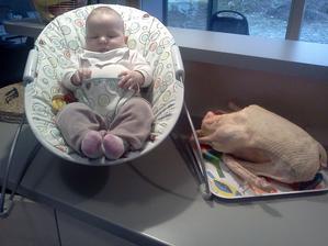 Toto sem nešlo nedat... husa vážící téměř stejně jako naše dítě... :-D