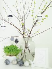 větvičky z břízy se začínají krásně zelenat...