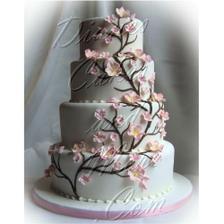 Pekná tortička:-)