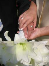 ruku v ruce - prsteny a kytka