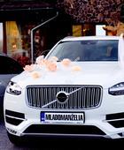 Marhuľová kvetinová výzdoba auta,