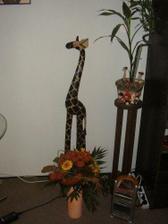 kytička z Řecka a moje milovaná žirafka s okousanýma ouškama:)