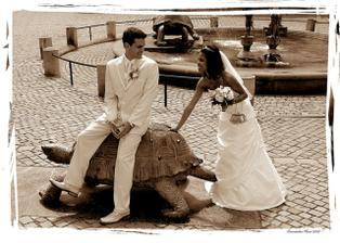 olomoucká želva:-)...omlouvám se za kopii