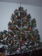Náš nádhernej strom... Vánoce 2007