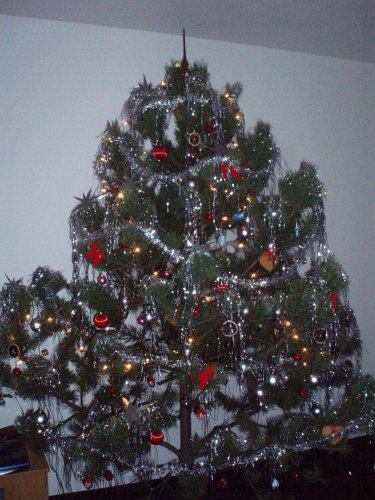 Rozjetý vlak - Náš nádhernej strom... Vánoce 2007