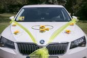 Dekorace na auto-slunečnice,