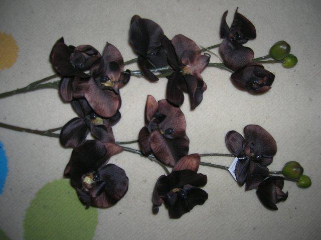 Alenka a jožko - hnedé orchidey