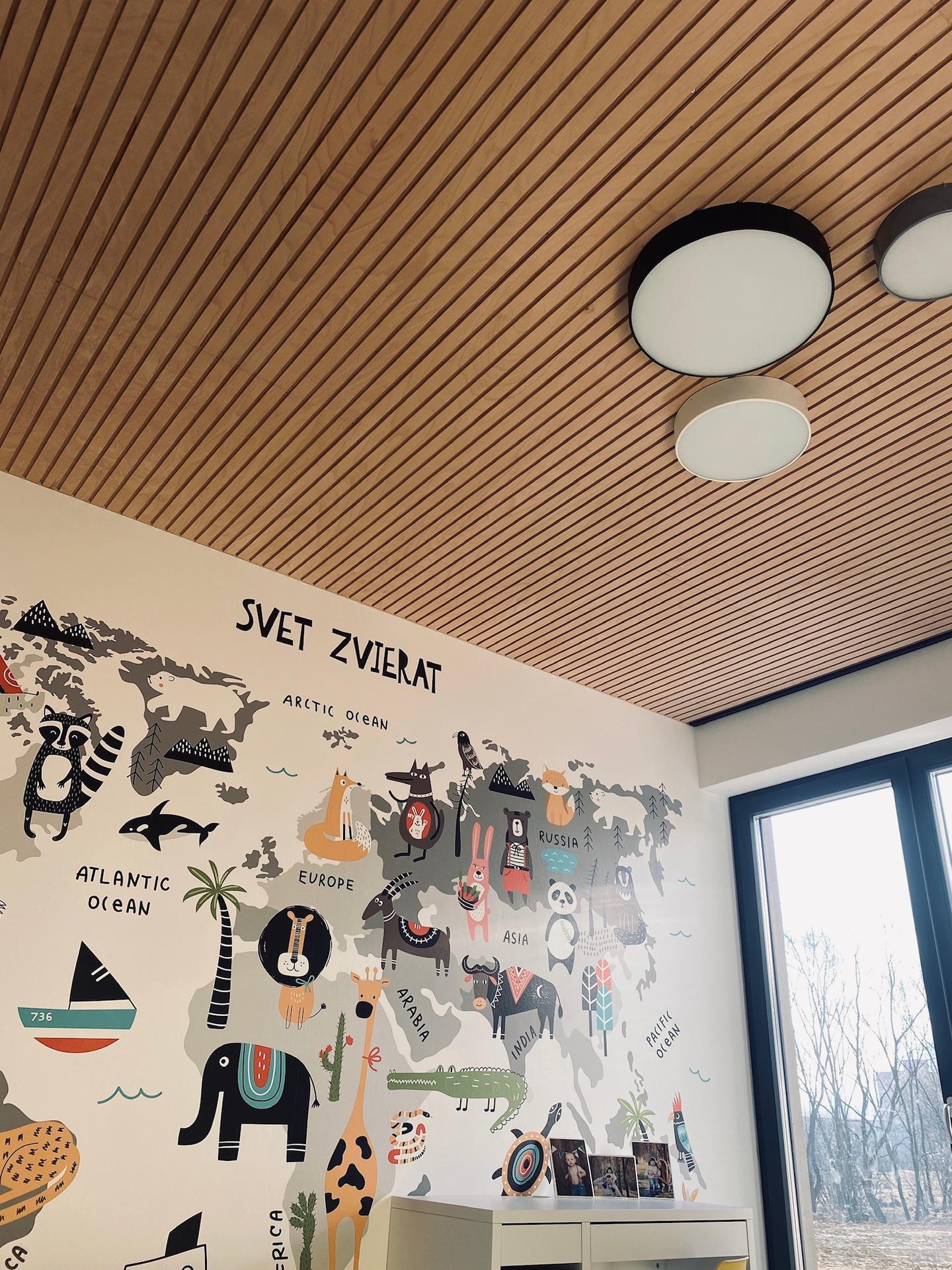 Lamelový panel na stenu/strop - strop lamelovy panel natur