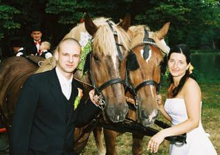 Koníci byli úžasní a taky jim to moc slušelo