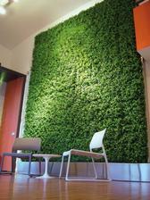 živa zelena nielen na fasade