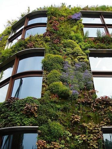Zelene fasady - Obrázok č. 88