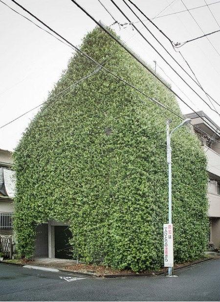 Zelene fasady - Obrázok č. 91