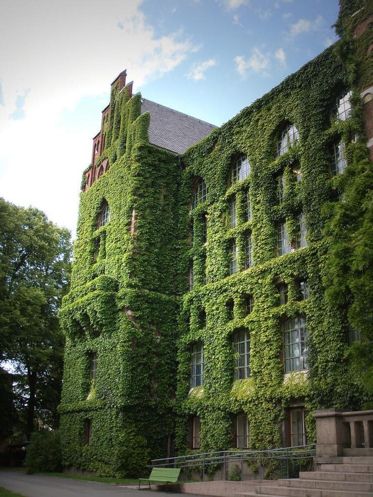 Zelene fasady - Obrázok č. 92