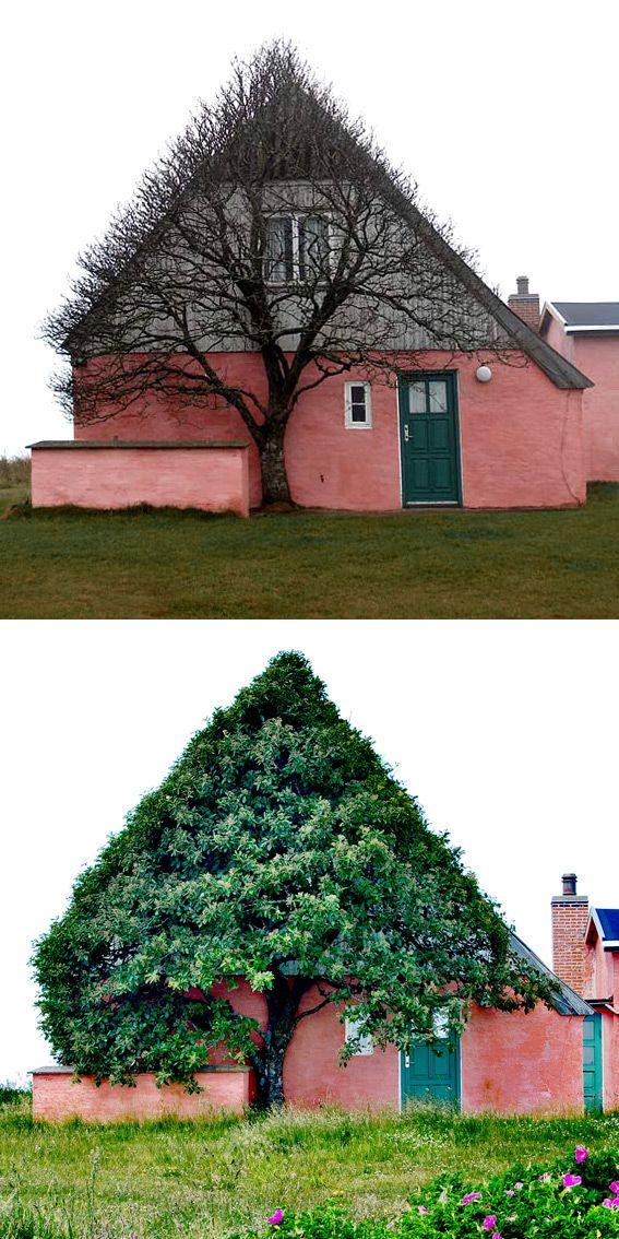 Zelene fasady - Obrázok č. 93