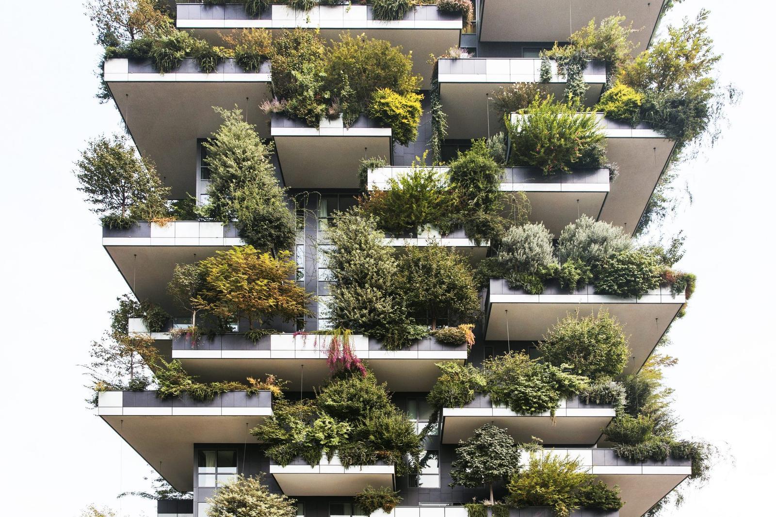 Zelene fasady - Obrázok č. 77