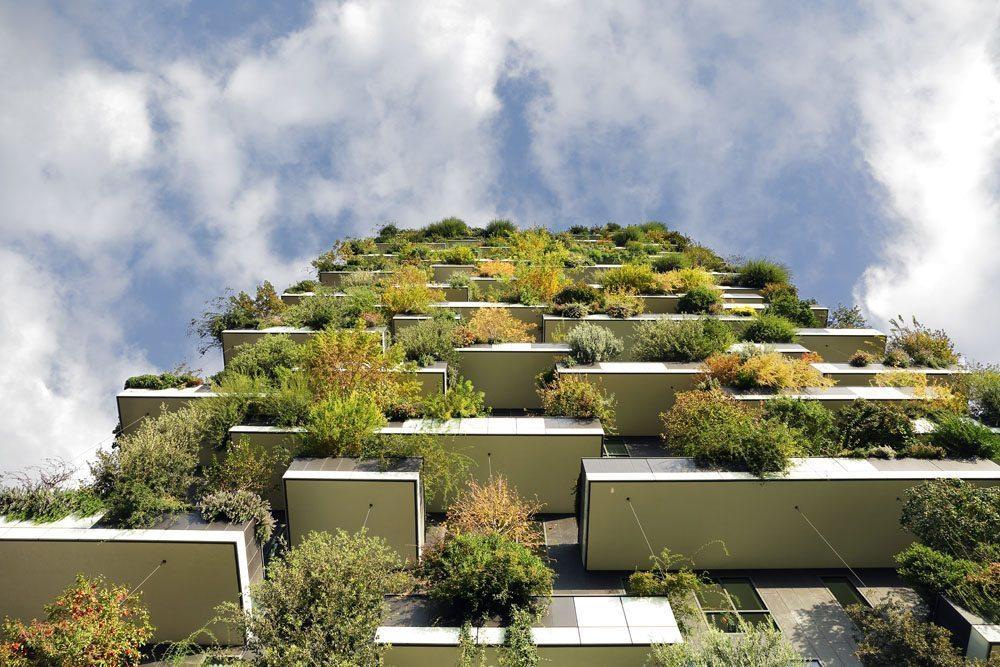 """Zelene fasady - """"Ten projekt sa zrodil z mojej posadnutosti stromami a z úvah, ako by sa mohli stať podstatnou časťou architektúry,""""- architekt Stefano Boeri"""