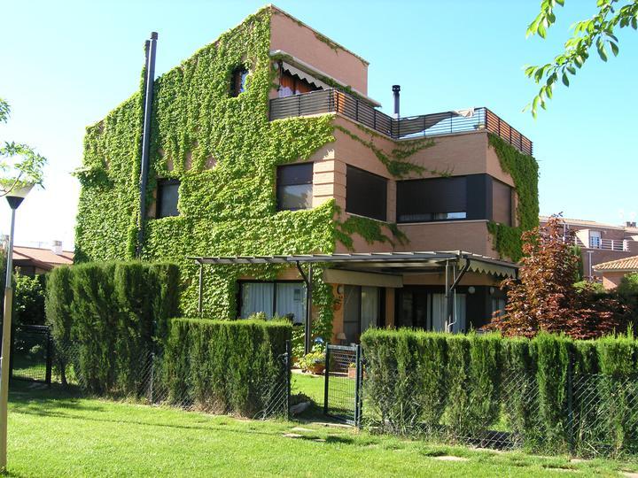 Zelene fasady - Ak sa rozhodnete pre tento typ oživenia vonkajšieho vzhľadu vášho domu popínavými rastlinami, buďte pripravený na záporné argumenty, ktorými vás budú chcieť od vášho rozhodnutia odhovoriť. Nenechajte sa odradiť názormi, že murivo bude vlhnúť.