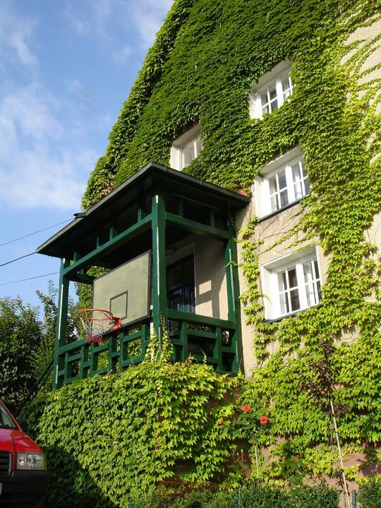 Zelene fasady - Výskumy a dlhoročné skúsenosti názorom o škodlivosti zelene na fasáde nedávajú za pravdu. Rastliny pri správnej voľbe, na stene domu neškodia, práve naopak. Zelená hmota stenu nielen oživí, ale aj účinne ochráni. Popínavky vytvárajú akúsi izoláciu.