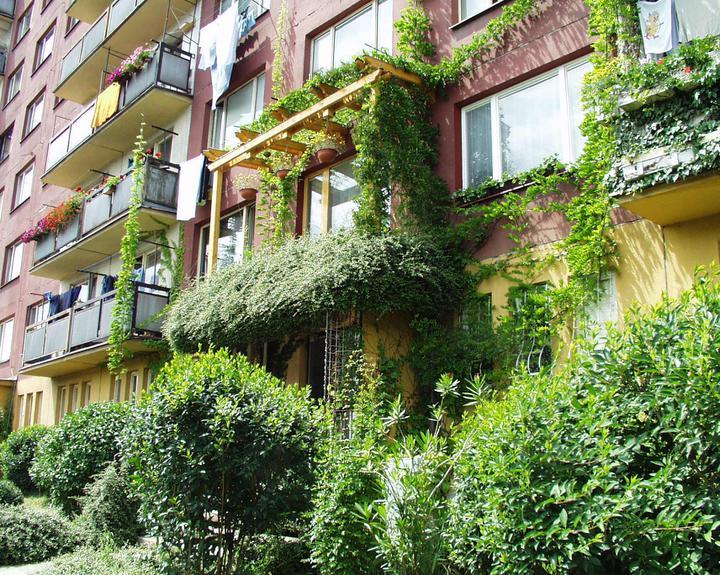 Zelene fasady - Aj na paneláku fasáda získala príjemnejší vzhľad, nie je už strohá a pochmúrna