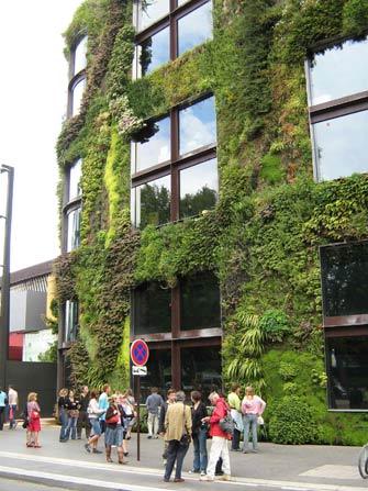 Zelene fasady - Zelené fasády prinášajú prirodzený svet do mestského prostredia