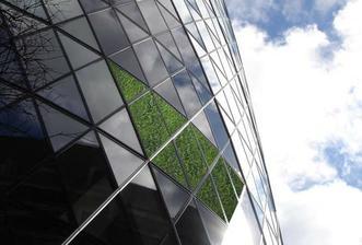 Majitelia veže očakávajú, že ušetria polovicu energie na klimatizáciu. Zelený obal je väčšinou zmes lišajníkov a tráv