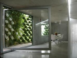 ...a priestor medzi oknami a predsadenou zelenou fasádou je efektný aj z interiéru