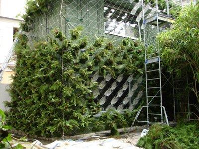 Zelene fasady - Tradične sú rastliny priamo na fasáde, tu Patrick Blanc vytvoril samostatný zelený obal a úplne zamaskoval stavbu....
