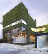 Popularitu zelených stien možno pripísať aj francúzskemu botanikovi - architektovi Patrick Blanc-ovi