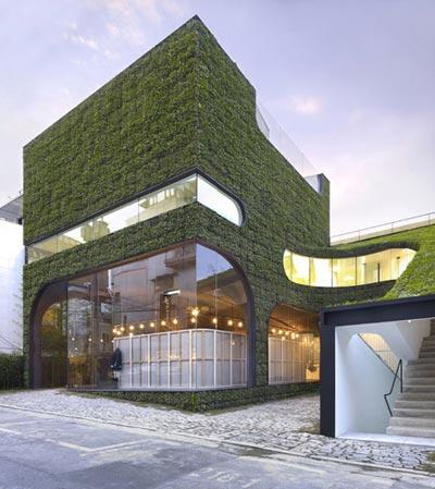 Zelene fasady - Popularitu zelených stien možno pripísať aj francúzskemu botanikovi - architektovi Patrick Blanc-ovi