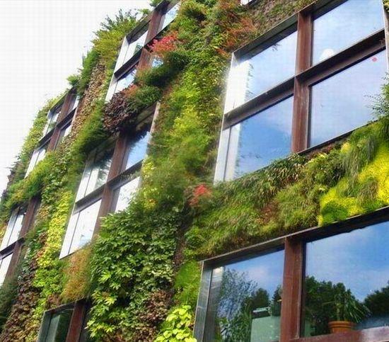 Zelene fasady - Vertikálna záhrada Patrick Blanc