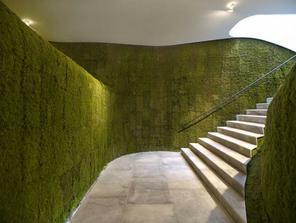 zeleň prechádza do interiéru