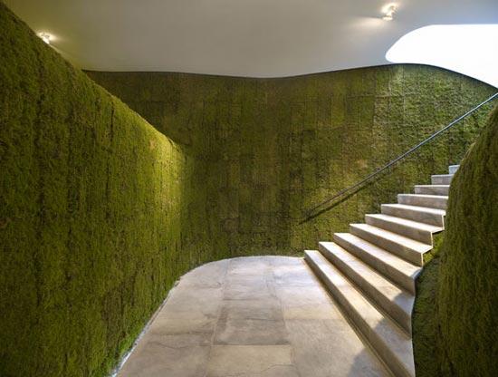 Zelene fasady - zeleň prechádza do interiéru