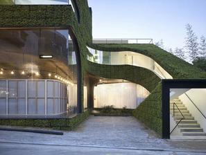 Geotextília s trvalkami na fasáde obchodu a reštaurácie v Soule - dizajn vytvorila kórejská firma Mass Studies
