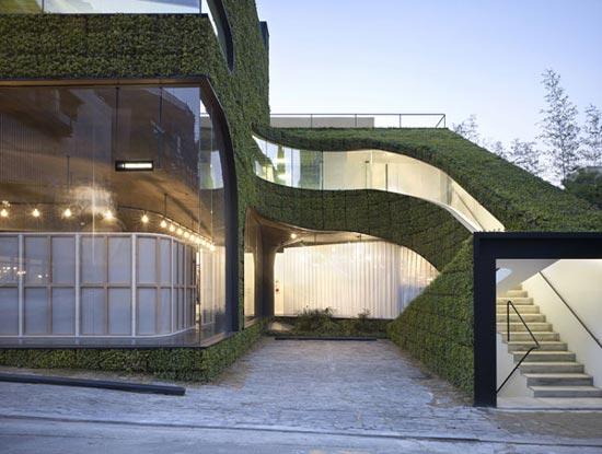Zelene fasady - Geotextília s trvalkami na fasáde obchodu a reštaurácie v Soule - dizajn vytvorila kórejská firma Mass Studies
