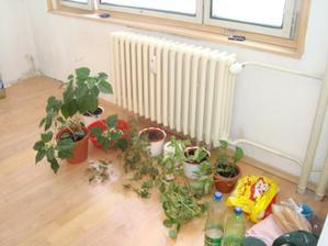 sťahovanie z bytu - kuchyňa