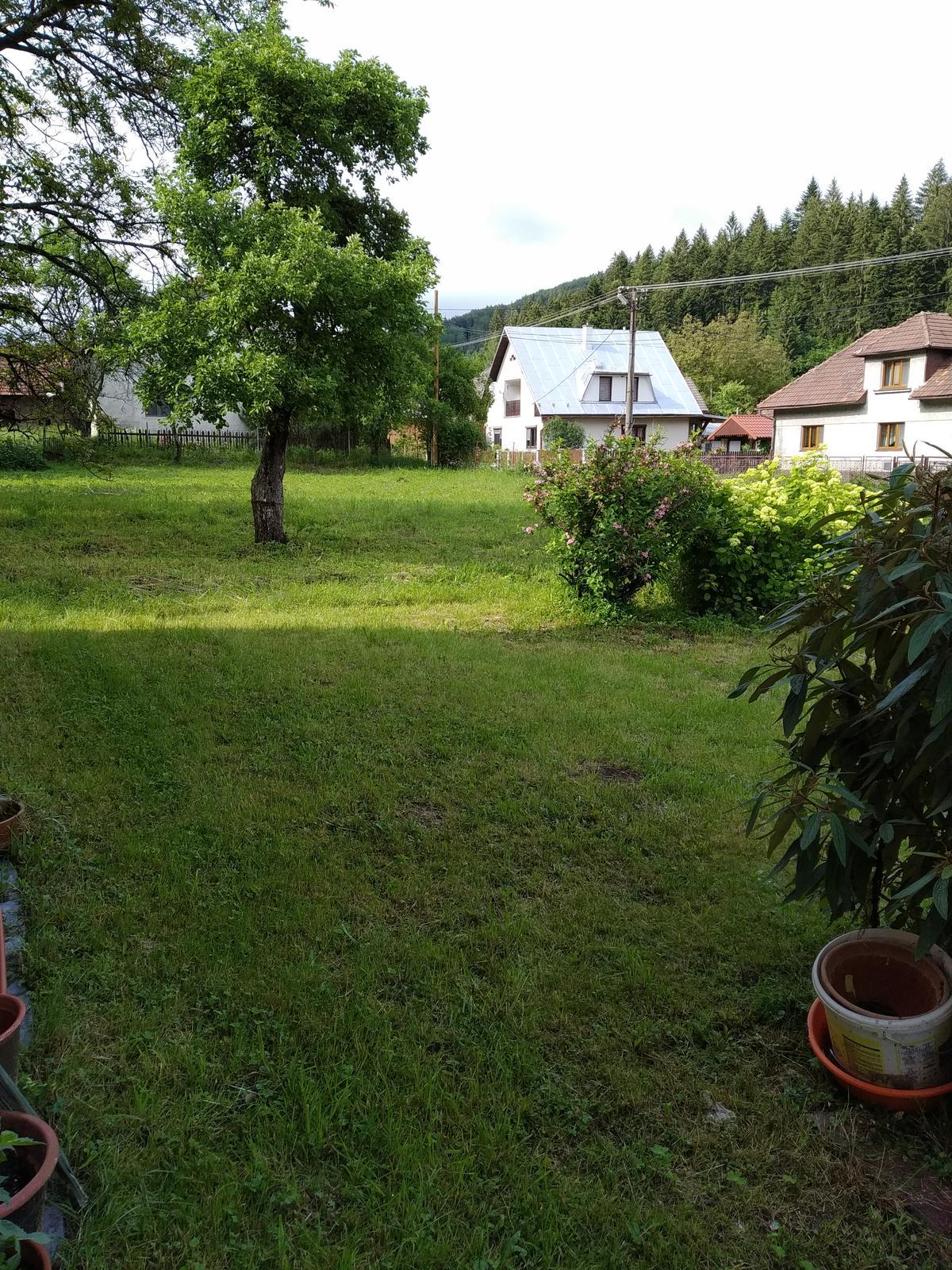 Babkina záhrada - Záhrada, kam len oko dovidí.