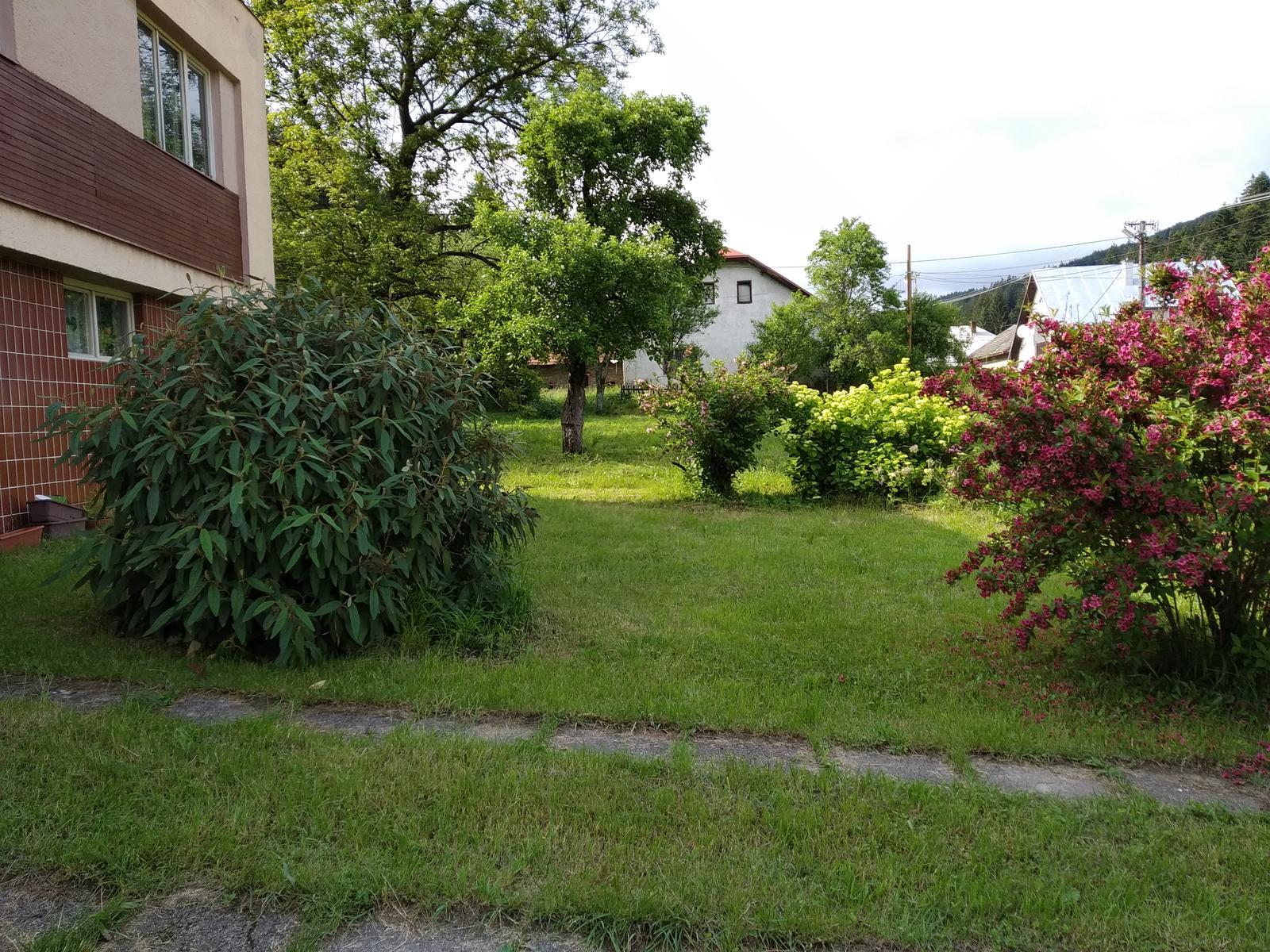 Babkina záhrada - To zelené na ľavo?