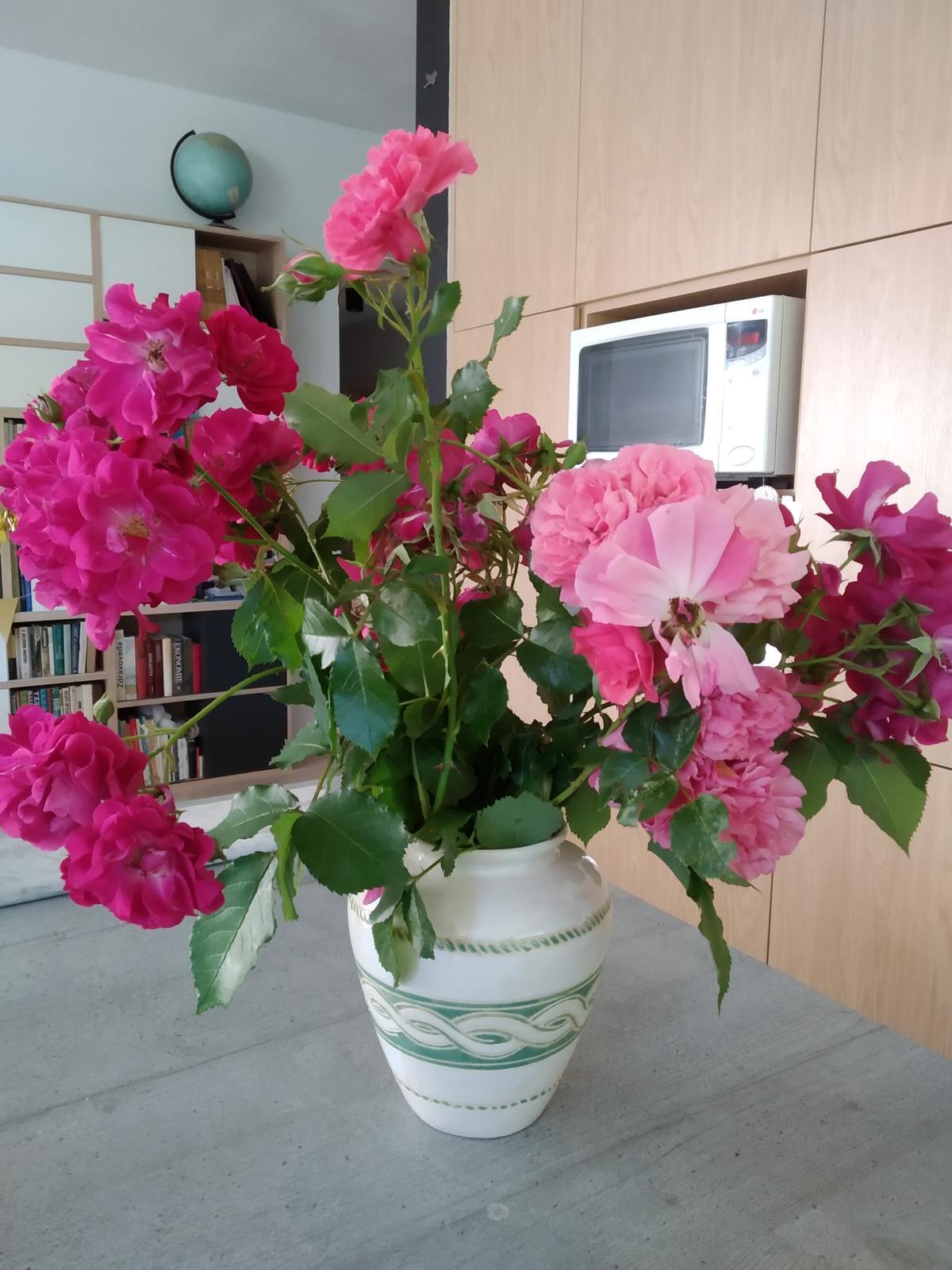 Babkina záhrada - Dostala som od babky, keď odkvitne, chcem namnožiť, resp. dať zakoreniť