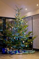 stromeček - 1. vánoce v baráčku