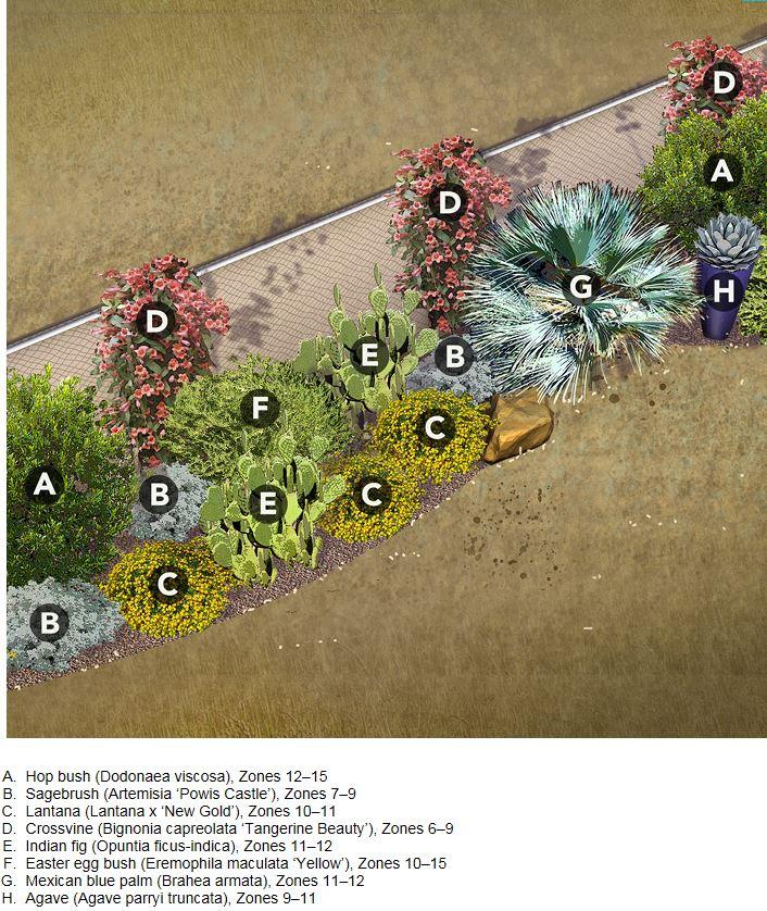 Inšpirácie do záhrady - orientacia na JZ