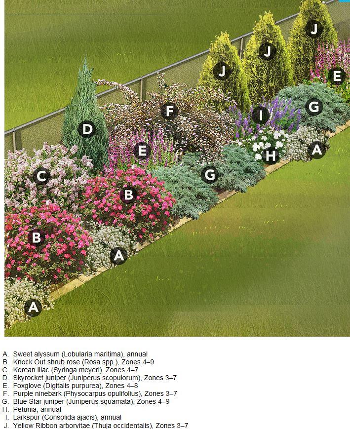 Inšpirácie do záhrady - orientacia na S