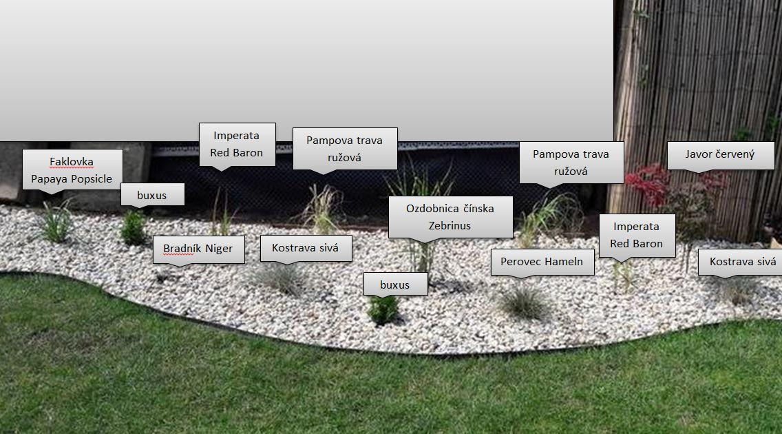 Záhrada plán a realizacia - Obrázok č. 9