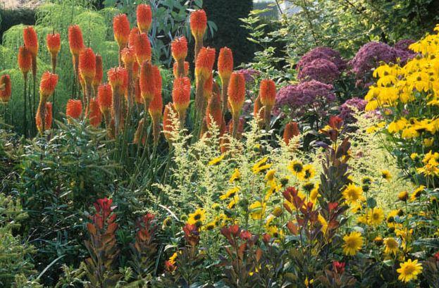 Inšpirácie do záhrady - Obrázok č. 70