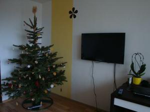 Vzhledem k tomu, že předěláváme elektriku, tak nám trochu čouhají kably. Televize ale stejně půjde potom do obýváku...