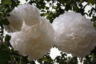 kytky z hedvábného papíru