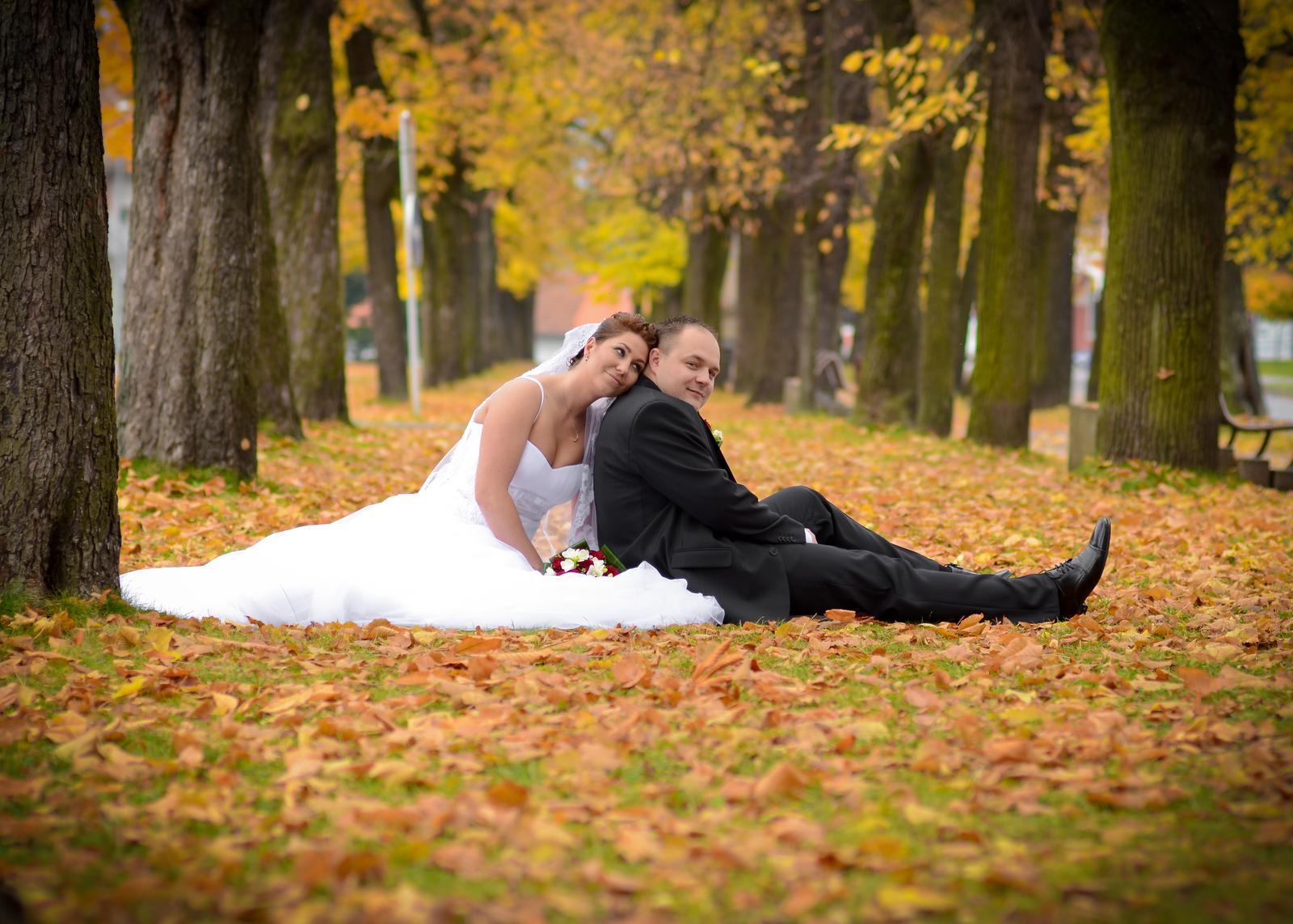 Svadby odohrate 2015-2016.... - Obrázok č. 14