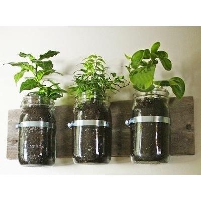 Balkónovanie - bylinková záhradka