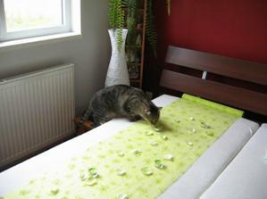 Max to kontroluje :-) Svicky voni po hruskach...