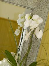 ...orchideos mojos v svadobnej sále